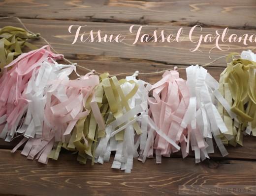 DIY-Tissue-Tassel-Garland